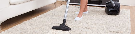 Holland Park Carpet Cleaners Carpet cleaning